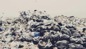 Низкая цена на вывоз мусора