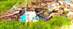 Вывоз мусора и ТБО в Химках