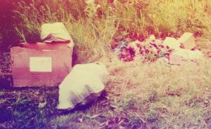 Вывоз мусора в Раменском