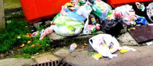 Вывоз мусора в ЗАО