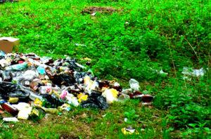 Вывоз мусора в Волоколамском районе