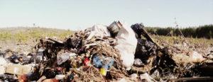 Вывоз мусора в Голицыно