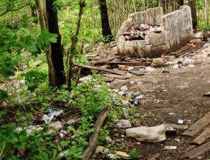 Вывоз мусора в Фирсановке