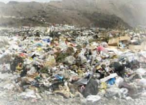 Вывоз мусора в Гжели