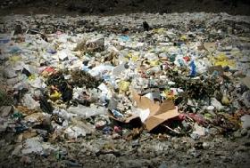 Вывоз мусора в Вешках